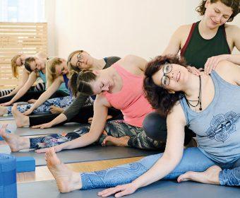 Hansa Yoga Forrest Yoga Hamburg Winterhude Barmbek Basics Anfängerworkshop