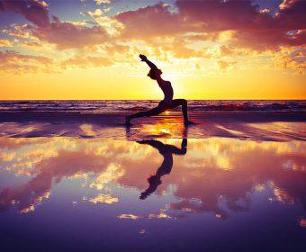 Hansa Yoga Vinyasa Yoga Hamburg Winterhude Barmbek Yogaspecial Stefanie Leu Herbst