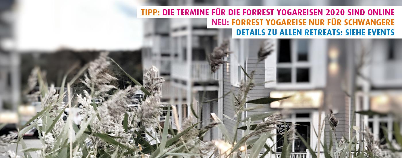 Hansa Yoga Forrest Yogareisen Retreats 2020 Beach Motel St. Peter-Ording Nordsee und barefoot Hotel Timmendorfer Strand Ostsee