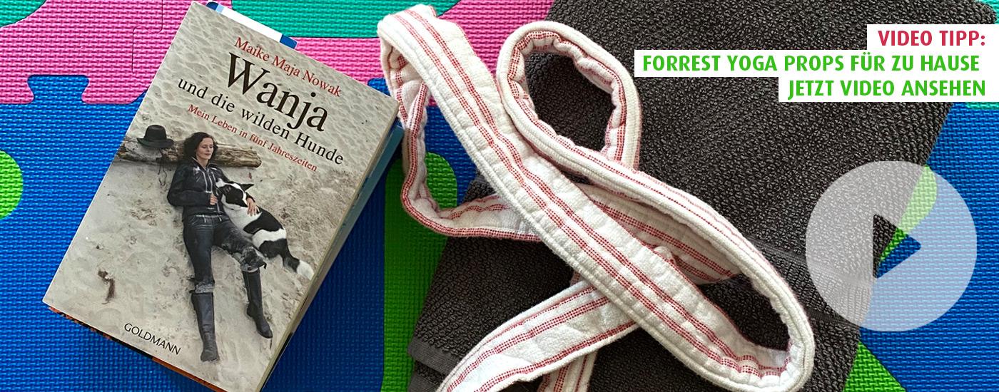 Hansa Yoga Forrest Yoga Props für zu Hause basteln Video ansehen